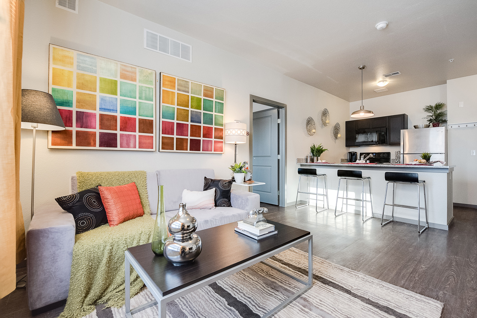 Home Staging for AirBnB, Staged Living Room Minneapolis #117 ~ Staged by Lionheart